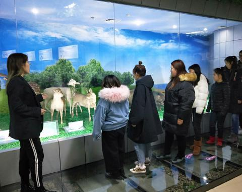 食品药品分院师生参观佳木斯大学动植物标本馆